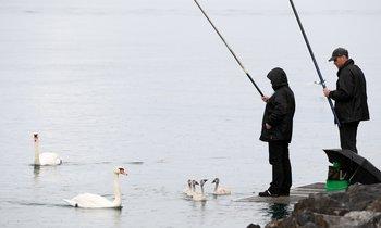 в еао рыбак расстрелял