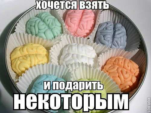 Чем отличаются наши мозги...