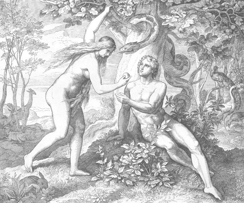 Иерей Константин Литвяков. Зачем родился Христос?