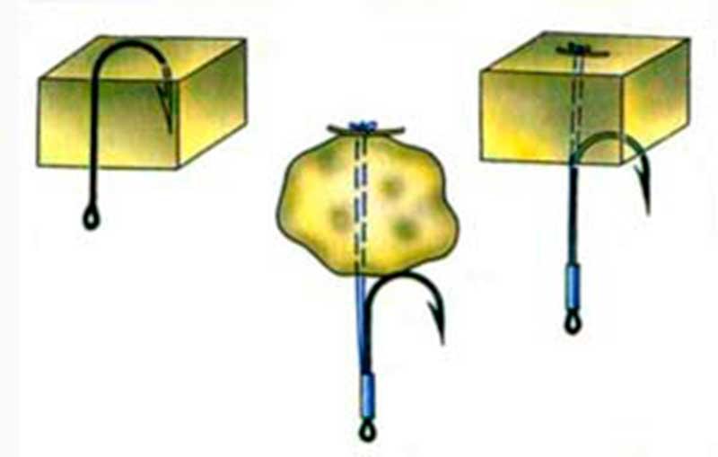 толстолобик речная или морская