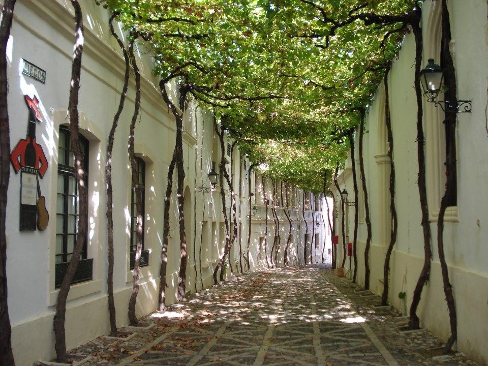 Самые уютные улицы в мире