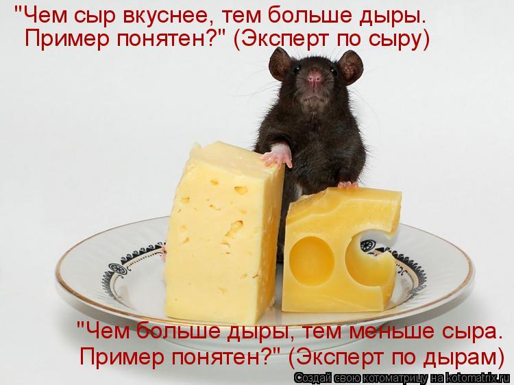 """Котоматрица: """"Чем сыр вкуснее, тем больше дыры. Пример понятен?"""" (Эксперт по сыру) """"Чем больше дыры, тем меньше сыра. Пример понятен?"""" (Эксперт по дырам)"""