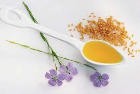 Полезные свойства льняного масла, масла фундука и рапсового. Часть 1