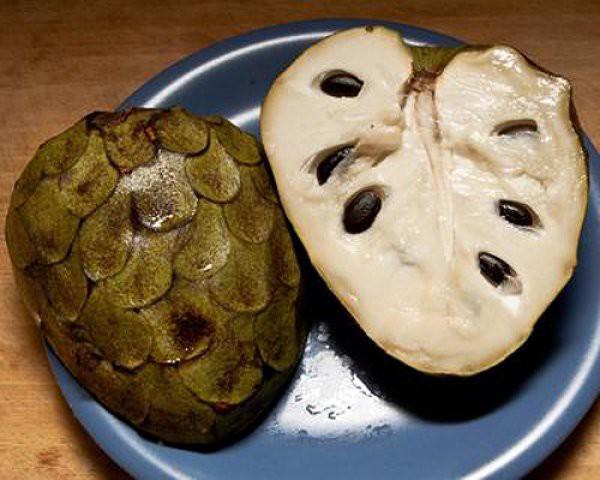 Черимойя (кремовое яблоко) ОПАСНО! еда, продукты