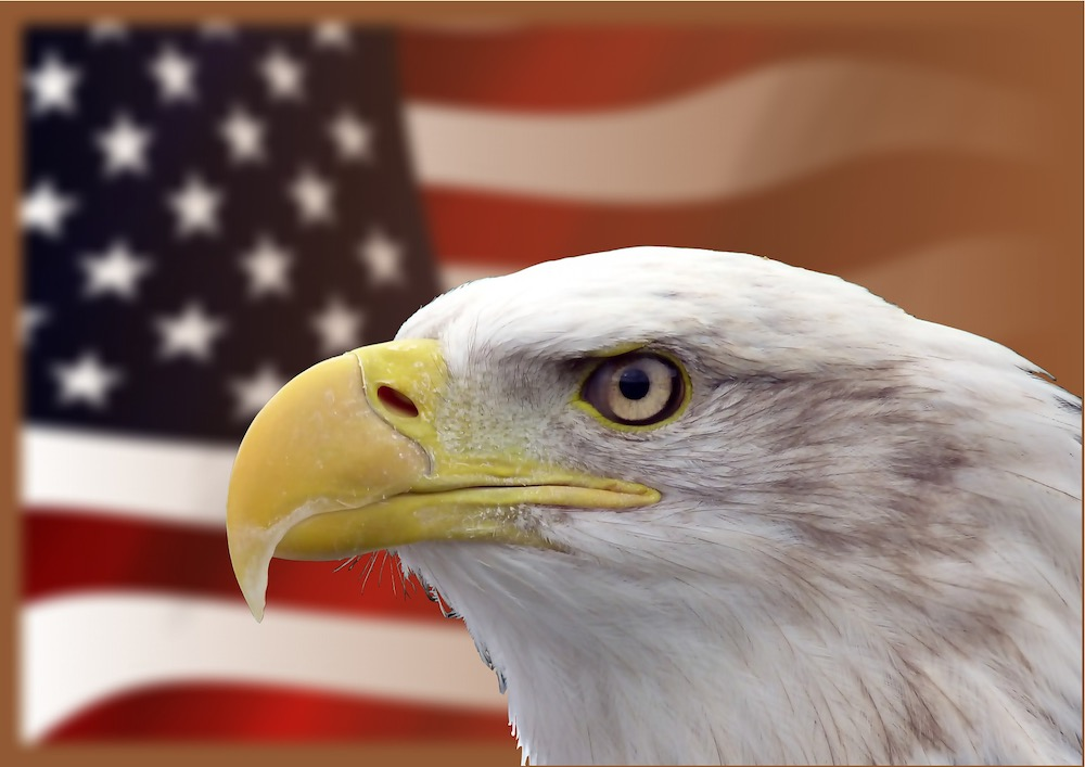 Напакостили и сбежали: США п…