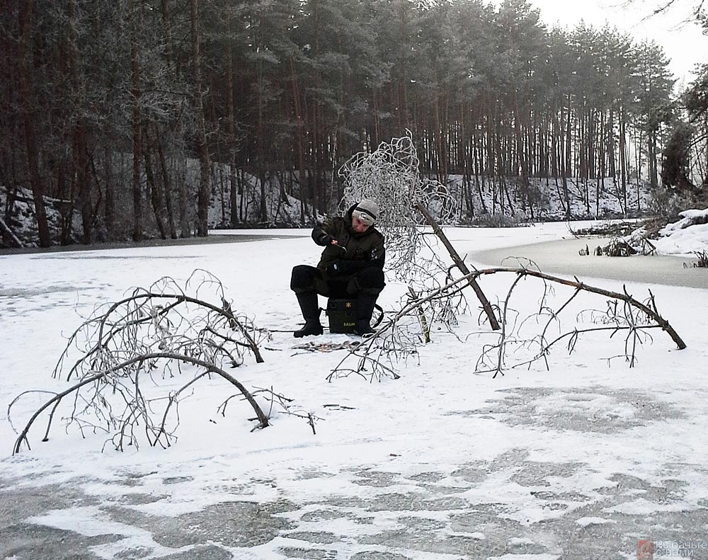 Приустьевые участки небольших речек с коряжником голавль часто выбирает для зимних стоянок.