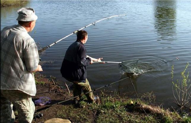 каши для прикормки рыб
