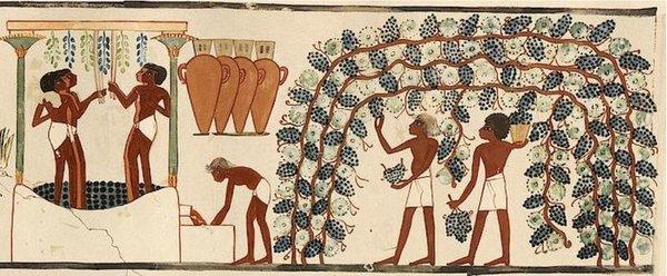 """Гипотеза """"пьяной обезьяны"""": …"""