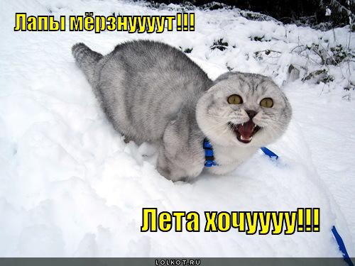 хочу лето!!!!!!!!!!!