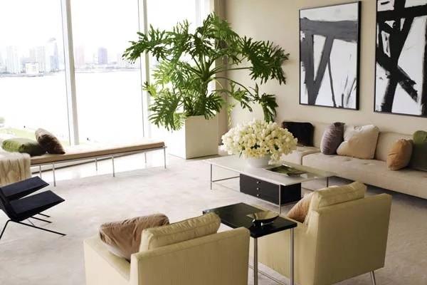 крупные живые растения в интерьере современной гостиной