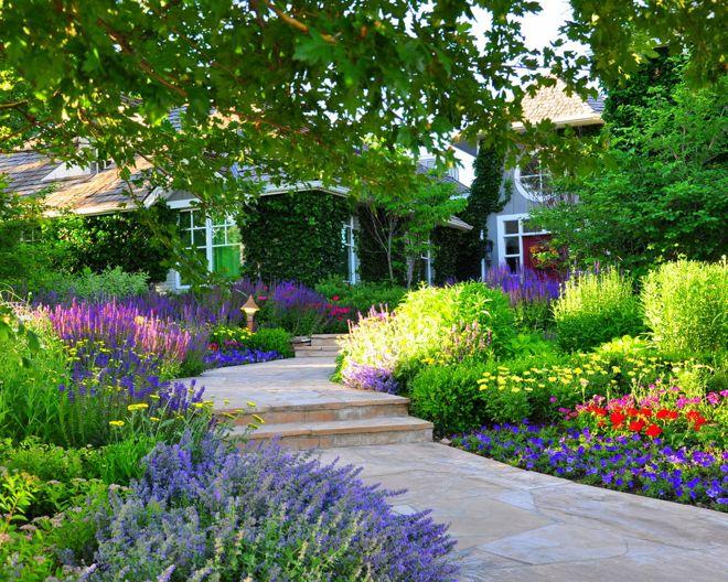 Где и как организовать красивый цветник