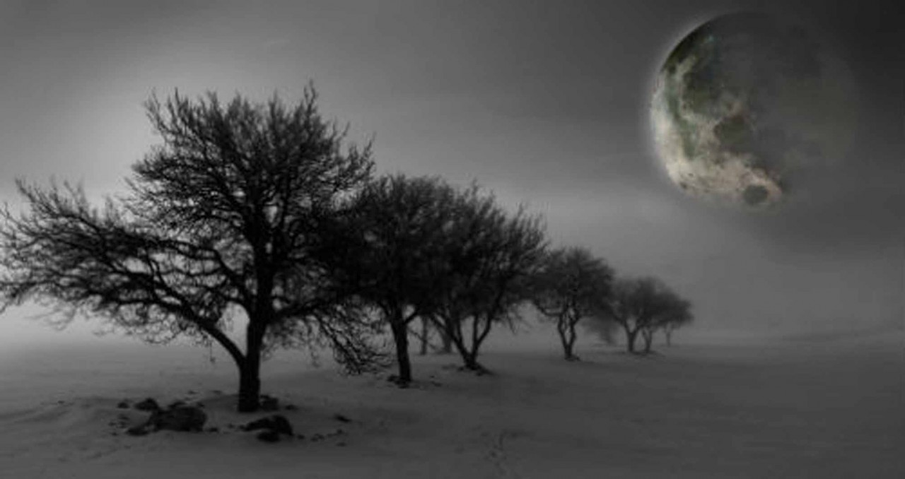 Лунный посевной календарь с 19.02.2018 года по 25.02.2018 года.Подробнее смотрите видео здесь