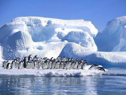 Странное дело. Антарктида. Ледяная Вселенная. 2012-04-20