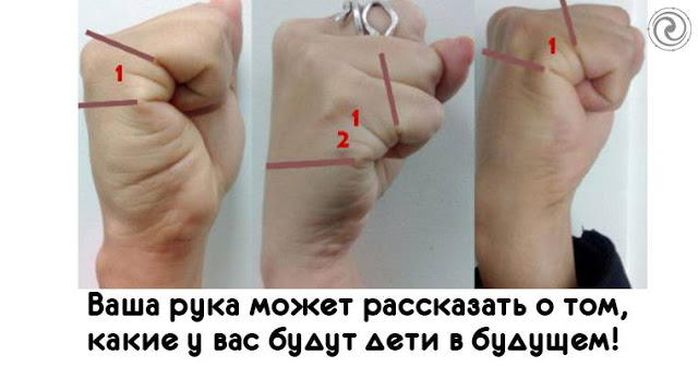 Ваша рука может рассказать о…