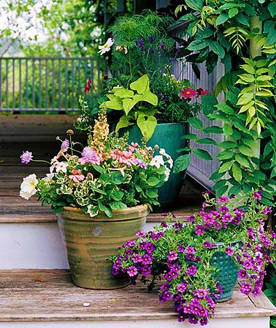 Дизайн маленького сада — контейнерное садоводство