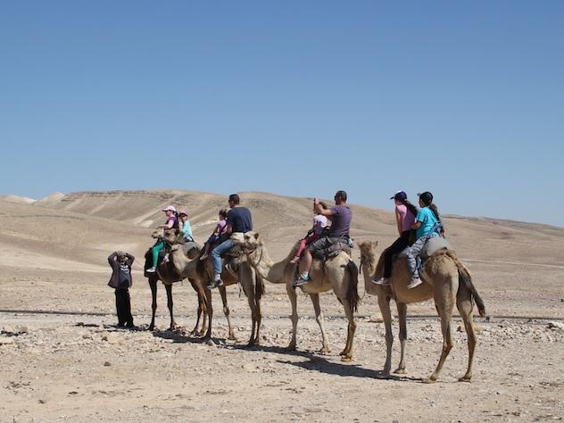Россиянам предложат туры в Египет за 25 тысяч рублей на семью