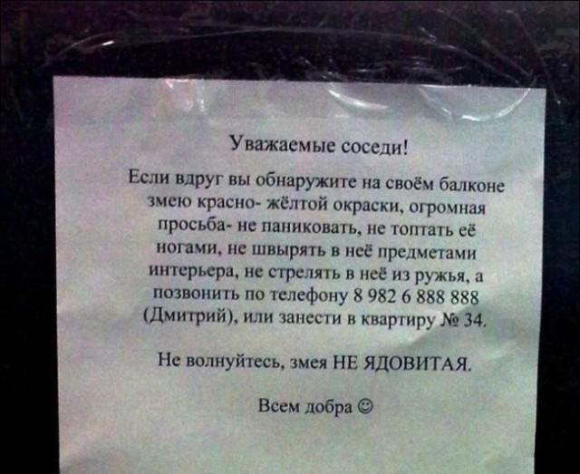 http://mtdata.ru/u25/photo5743/20790281931-0/original.jpg#20790281931