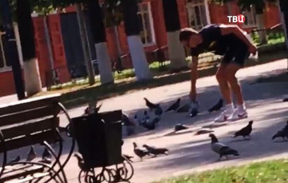 Жителю Клина грозит 5 лет тюрьмы за убийство 7 голубей