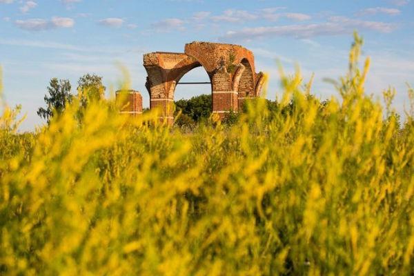 В Старой Рязани создадут археологический парк