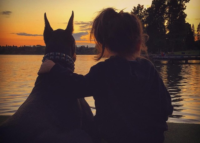 Красавица и чудовище: удивительная дружба крошечной девочки с гигантским доберманом