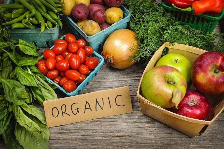 мифы о правильном питании, заблуждения о правильном питании, принципы правильного питания