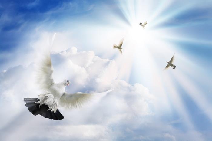 день Веры, Надежды, Любви