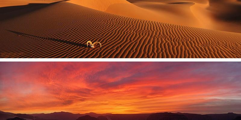 Красивейшие снимки самой большой пустыни в мире
