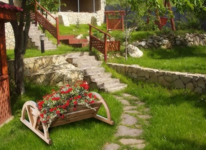 Ландшафтный дизайн ирисы