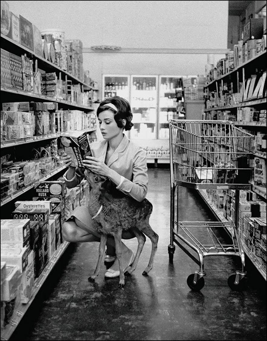Одри Хепбёрн делает покупки со своим олененком, Беверли Хиллз, 1958 Историческая фотография, история, факты