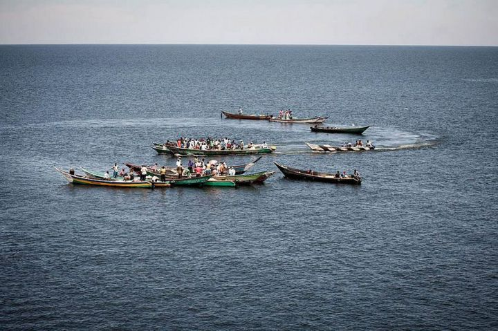 Мгинго – самый густонаселенный остров в мире…