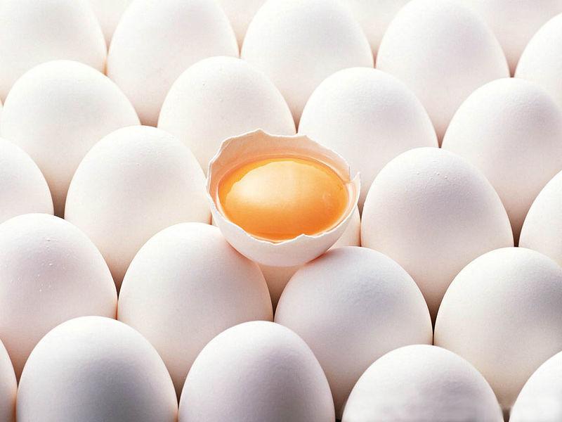 Куриное яйцо — что полезнее: желток или белок?