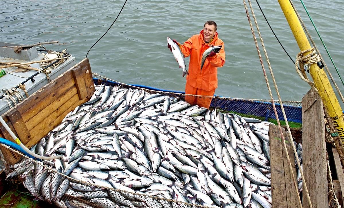 Производство рыболовного суд