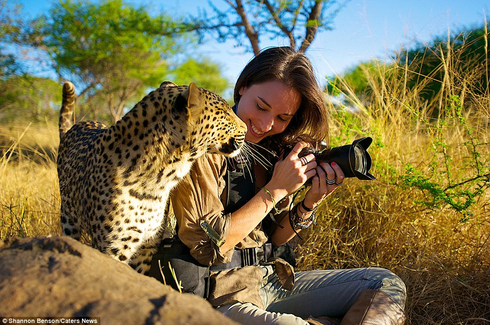 Brave girl-the photographer easily finds common language with wild animals 14