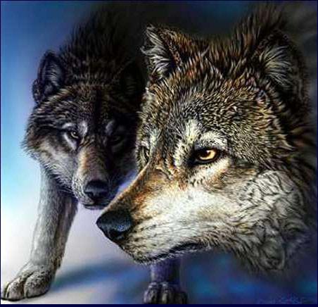 5 волков Стивена Гарднера, загадки, картины