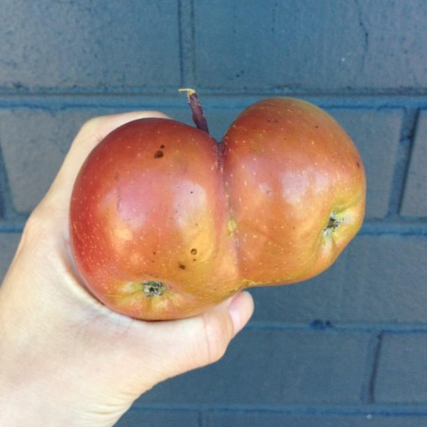 Фруктово-ягодные мутанты, которые удивят даже бывалых бананы, лимоны, овощи, фрукты, яблоки, ягоды