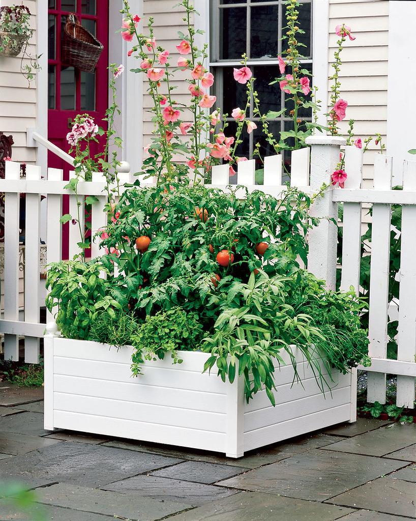 Садовые идеи для дачи