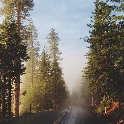 Природа в объективе фотографа Kevin Russ