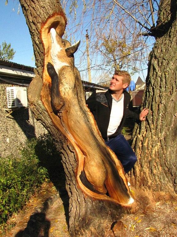 Закарпатский умелец создает чудо-скульптуры из сухих деревьев дерево, резьба