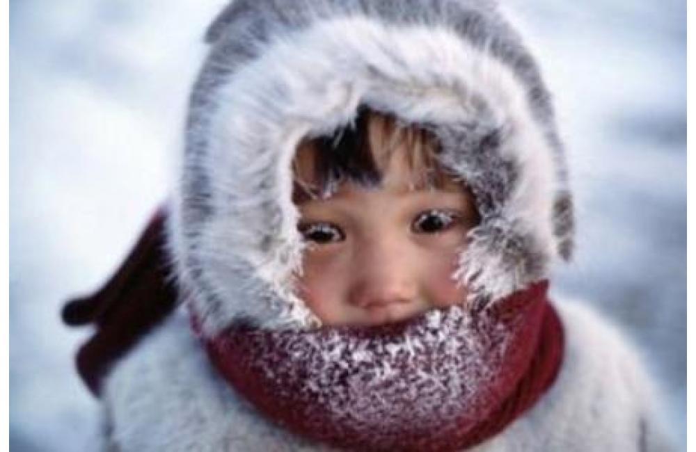 Ученые: Америку заморозила российская Арктика