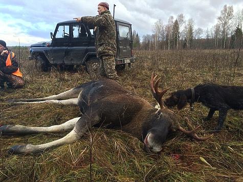 Записки тверского охотника