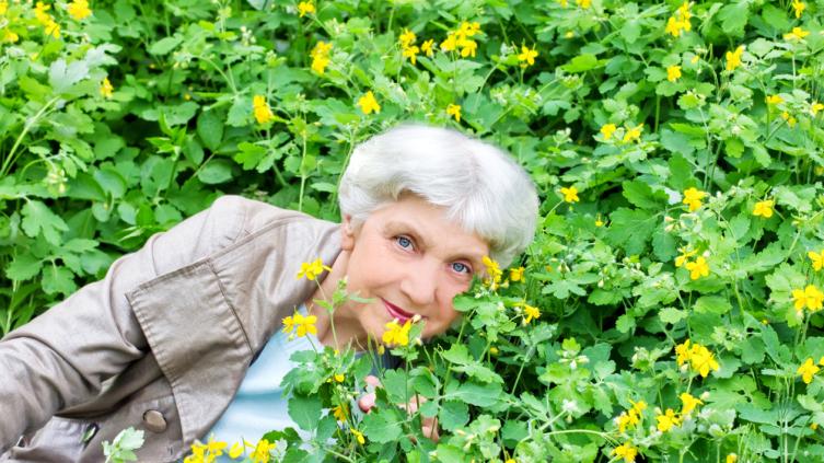 Какие растения-инсектициды помогут бороться с вредителями в саду и огороде? Часть 2. Готовим препараты сами