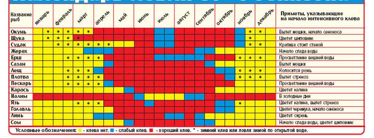 таблица клева в краснодаре