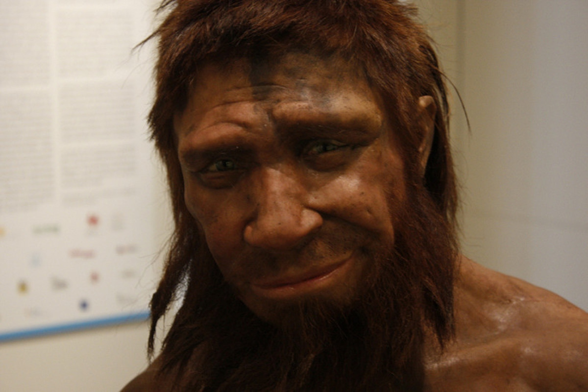 Что мы унаследовали от неандертальцев