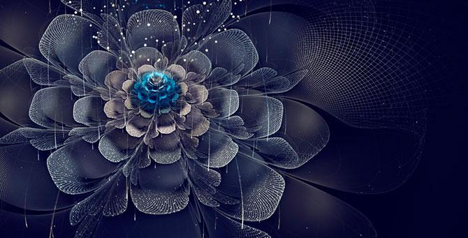 Фрактальное искусство Сильвии Кордедда