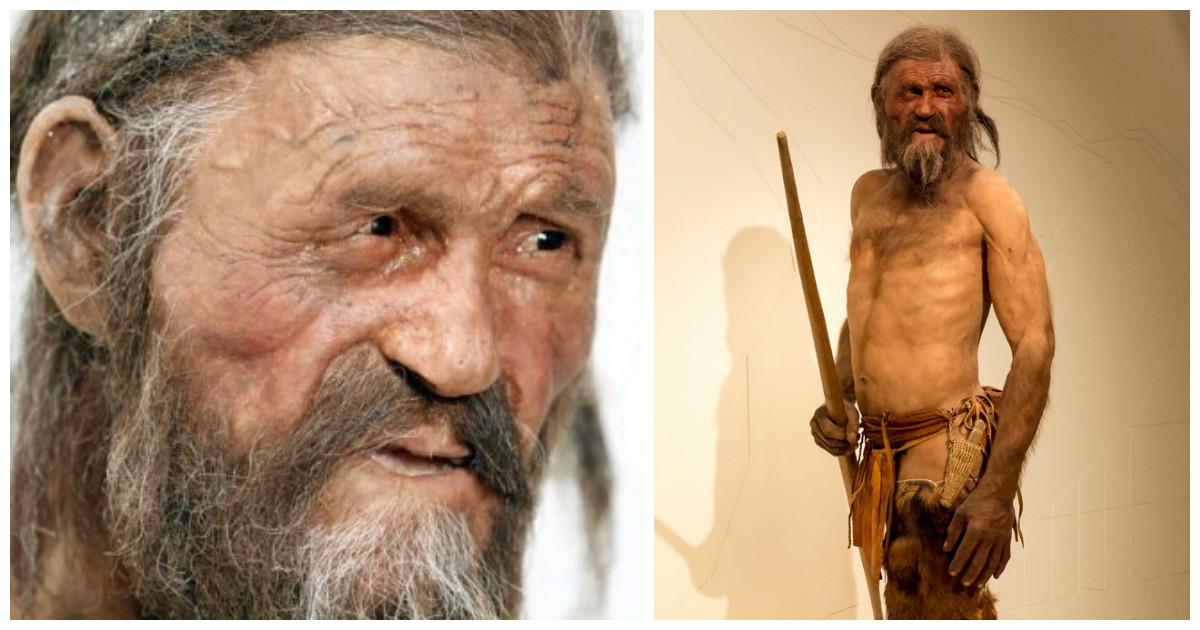 Ученые выяснили, что же ел древний человек, замерзший в Альпах более 5000 лет назад