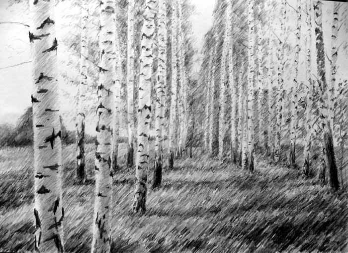 рисунки карандашом пейзажи - 12