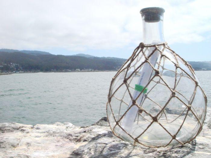 Необычное послание в бутылке бутылка, находка, послание