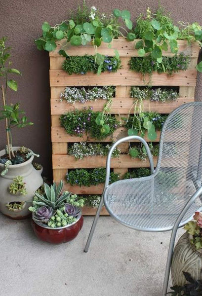 Вертикальный сад для пряностей