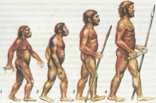 Обнаружены древнейшие останки человека разумного