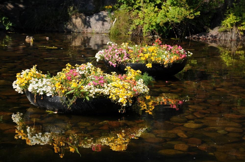 Плавучие островки с цветами в пруду